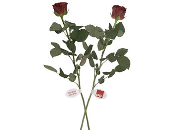 SPD Blumenanhänger, 1000 Stück (Art.-Nr. 1011)