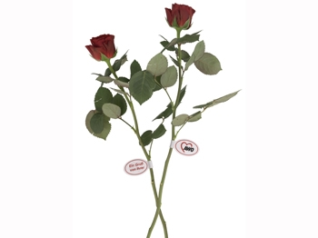 AWO Blumenanhänger, Haftetiketten, 500 Stück (Art.-Nr. 2127)
