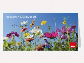 SPD Glückwunschkarten mit Umschlag, 100 Stück (Art.-Nr. 1110)